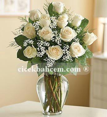 Sevgiliye Beyaz Gül