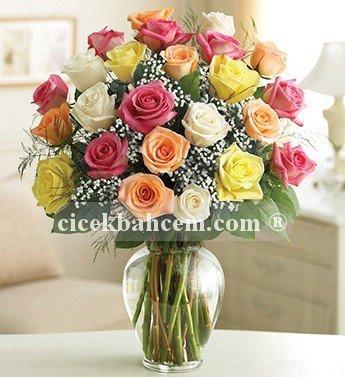İki Düzine Premium Renkli Güller