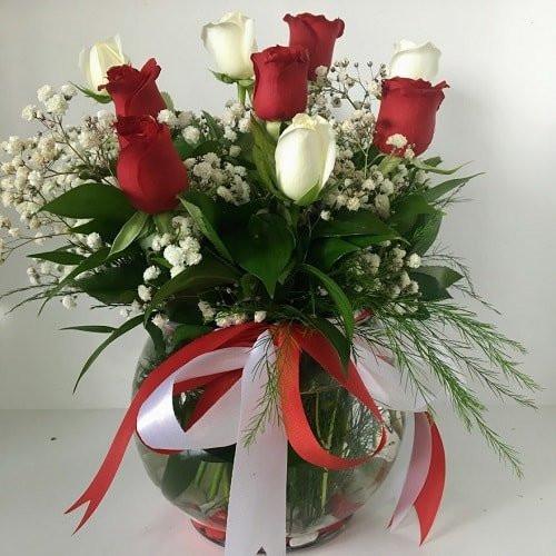 Mahsun Aşk Akvaryum Vazoda Kırmızı Beyaz Gül