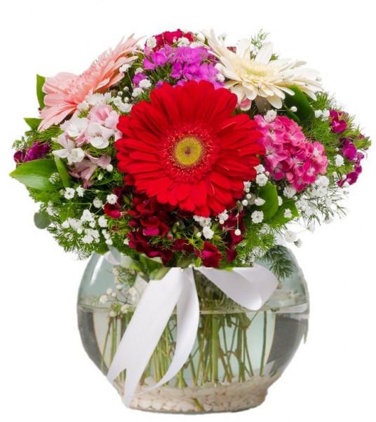 """""""Renklerin Büyüsü"""" Renkli Kır Çiçeği"""