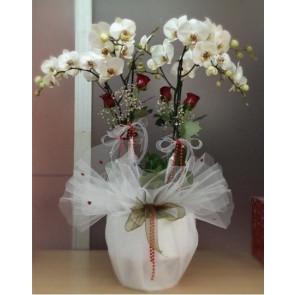 4 Dal Beyaz Orkide & 4 Kırmızı Gül