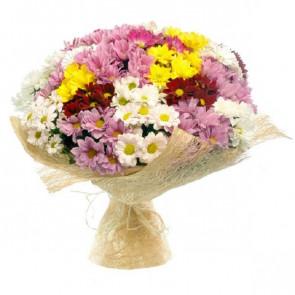 Karışık Krizantem Çiçeği, Papatya Buketi
