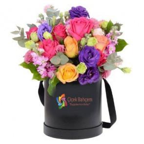 Kutu İçinde Mevsim Çiçekleri